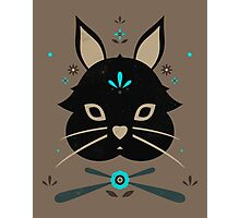 Black Bunny Photographic Print