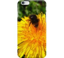 Busy Busy Bumble Bee  iPhone Case/Skin