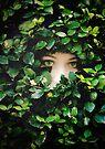 Hide and Seek by Sybille Sterk