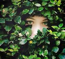 Hide and Seek by Sybille Sterk