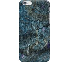 The Atlas of Dreams - Color Plate 6 iPhone Case/Skin