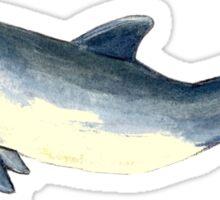 Baby bottlenose dolphin Sticker