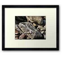 The Shore Rocks Framed Print