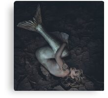 mermaid trapped in a sea of ​​mud, concept fantasy fish woman with beautiful blond hair and her body scales Canvas Print