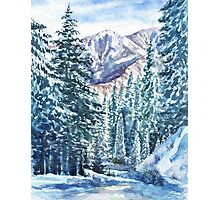 Winter Forest And Mountains Photographic Print