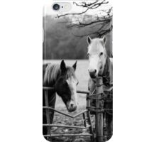 Horse Portrait iPhone Case/Skin