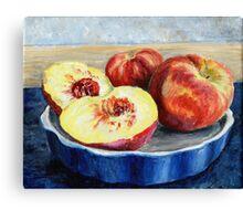 Peach Painting Canvas Print