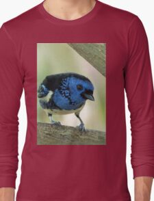 Turquoise Tanager Long Sleeve T-Shirt