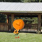 Orange crush by Susan Littlefield