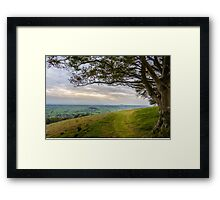 Green Path Framed Print