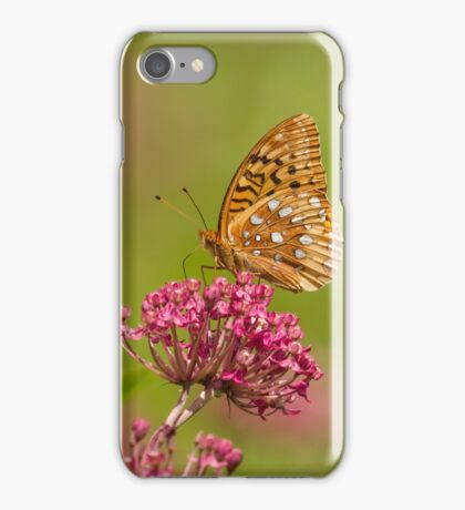 Fritillary On Milkweed 2014-2 iPhone Case/Skin