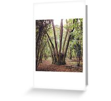 Forest Crown Greeting Card