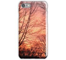 Michigan Sunset iPhone Case/Skin