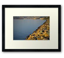 San Diego California's Harbor Island Framed Print