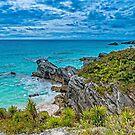 A South Breeze BERMUDA.. by buddybetsy
