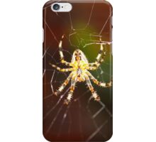 Unique Spider Design iPhone Case/Skin