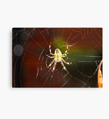 Unique Spider Design Canvas Print