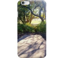 Looking through a sun-lit window of branches. iPhone Case/Skin