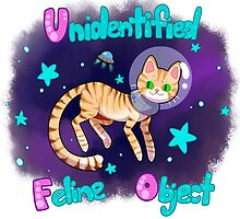 Unidentified Feline Object - UFOcat (Tabby) by ZeonAce