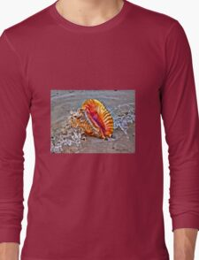 Conch Shell Long Sleeve T-Shirt