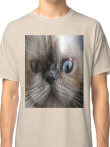 Cute hypnotizing cat stare Classic T-Shirt