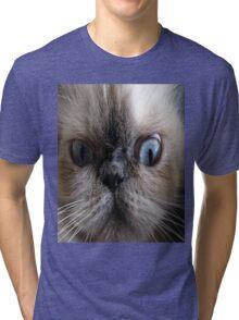 Cute hypnotizing cat stare Tri-blend T-Shirt