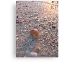 Macro Beach Reflections Canvas Print