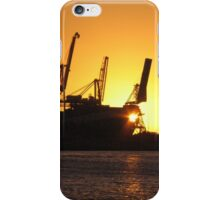 Cranes at Sunset iPhone Case/Skin