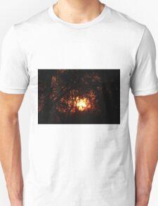 Fiery Sunset Through The Eucalypts T-Shirt