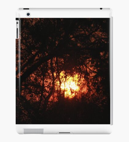 Fiery Sunset Through The Eucalypts iPad Case/Skin