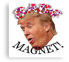 Babe Magnet! Canvas Print