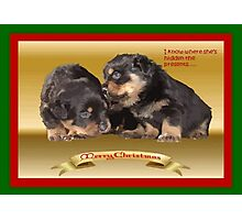 Vector Rottweiler Puppy Christmas Wishes  Photographic Print
