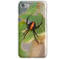 The deadly Red back Spider, Western Australia iPhone Case/Skin