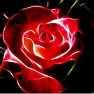 Red Rose Fractalius by shutterbug2010