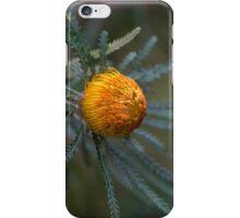Australian native  iPhone Case/Skin