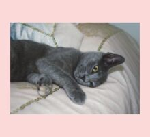 Grey Kitten Relaxed On A Bed Kids Tee