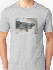 Grey Kitten Relaxed On A Bed Unisex T-Shirt