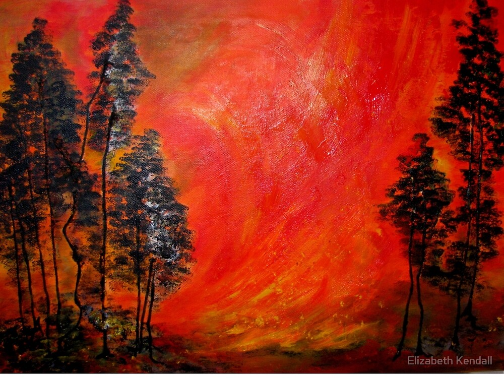 Veldfire by Elizabeth Kendall