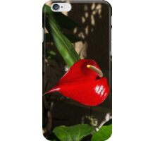 Glossy Scarlet Heart in the Shadows - an Elegant Anthurium Flower iPhone Case/Skin