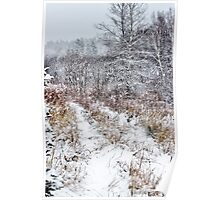 The Old Trail in a Winter Snow Poster