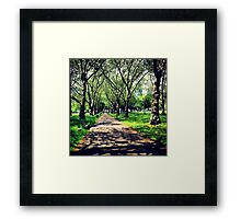London Summer Park Path Framed Print