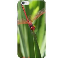 Wings That Glisten iPhone Case/Skin
