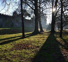 castle by demor44