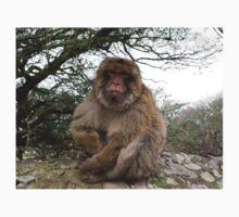 Barbary macaques in Gibraltar Kids Tee