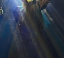 Christine Dwyer as Elphaba Sticker