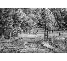 Found Fencing Photographic Print