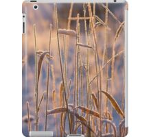 Frost Pipes iPad Case/Skin