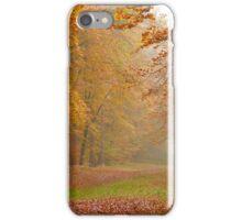 Misty beech iPhone Case/Skin