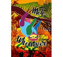 Whenever Sloth Photographic Print