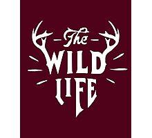 The Wild Life - version 1 - White Photographic Print
